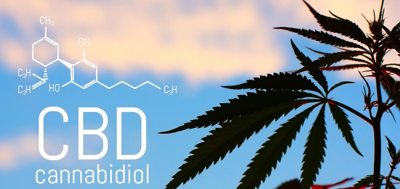 CBD FAQs banner